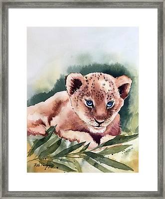 Kijani The Lion Cub Framed Print