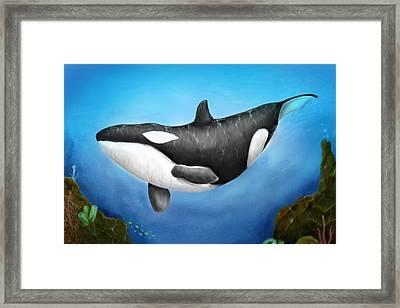 Killer Whale Framed Print by Christian Lopez
