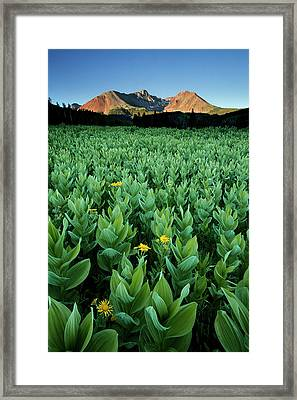 Kilpacker Basin Framed Print
