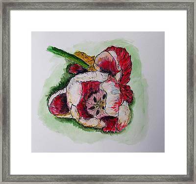 Kimberly's Flowers Framed Print