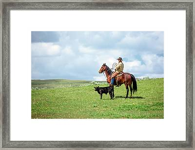 Kind And Gentle Framed Print by Todd Klassy