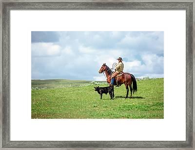 Kind And Gentle Framed Print by Todd Klassy