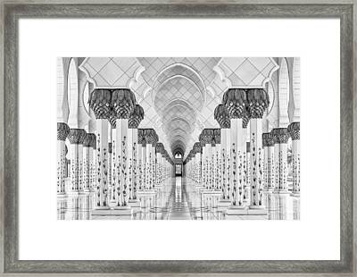 Kind Of Symmetry Framed Print by Stefan Schilbe