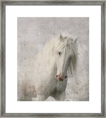 Kindness Framed Print by Dorota Kudyba