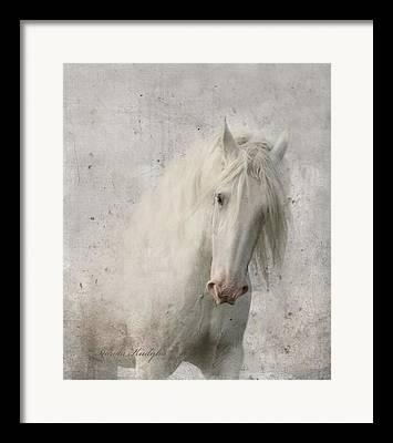 Fairy Photographs Framed Prints