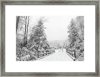 Framed Print featuring the photograph Kindness Is Like Snow by Lori Deiter