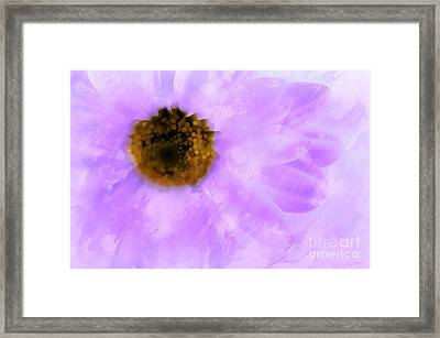 Kindness Matters Framed Print