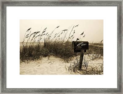 Kindred Spirit Framed Print by William Haney