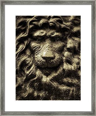 King Framed Print by Andrew Kubica