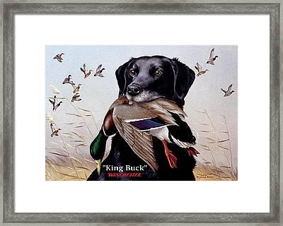 King Buck - 1959-60 Federal Migratory Waterfowl Stamp Artwork Framed Print
