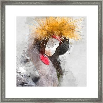 King Crane Colorful Portrait 1 - By Diana Van Framed Print