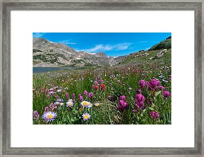 King Lake Summer Landscape Framed Print