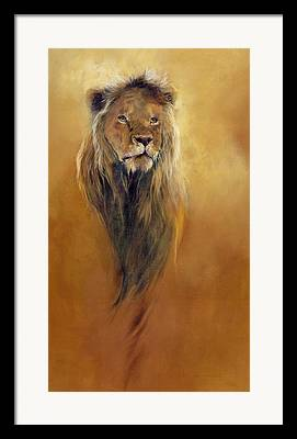 Lion Framed Prints