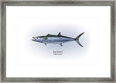 King Mackerel Framed Print by Ralph Martens