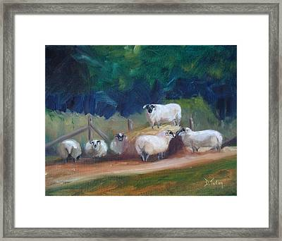 Framed Print featuring the painting King Of Green Hill Farm by Donna Tuten