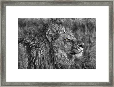 King Of The Beasts Framed Print