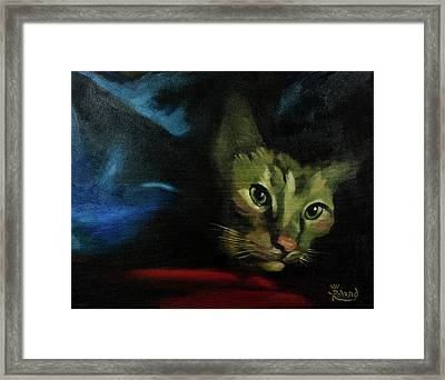 King Of The Blanket Cave Framed Print