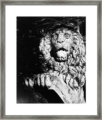 King Of The Concrete Jungle Framed Print