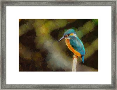 King Of The Fishers By Pierre Blanchard Framed Print