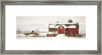 King Of The Hill Framed Print by Lori Deiter