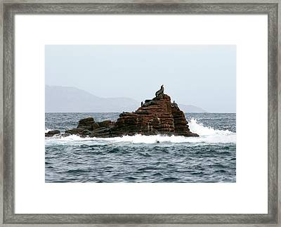 King Of The Hill Framed Print by Richard Steinberger