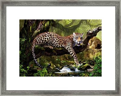 King Of The Jungle  Framed Print by Regina Femrite