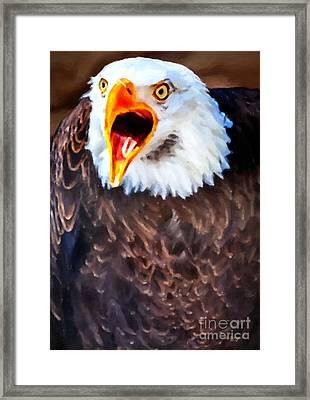King Of The Raptors Framed Print by David Millenheft