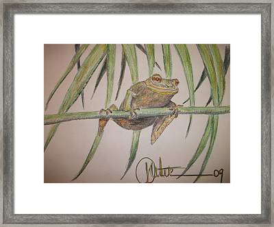 King Of The Reed Framed Print