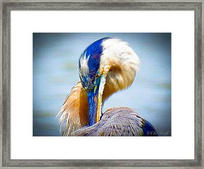 King Of The River Framed Print