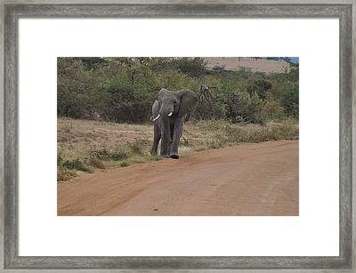 King Of The Road Framed Print by Joe  Burns