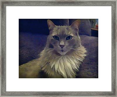 King Of The Sofa Framed Print
