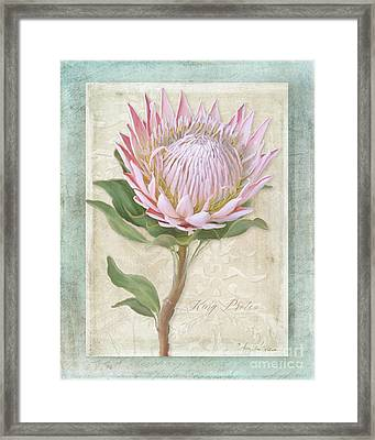 Framed Print featuring the painting King Protea Blossom - Vintage Style Botanical Floral 1 by Audrey Jeanne Roberts