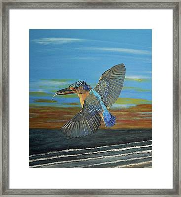 Kingfisher Of Eftalou Framed Print by Eric Kempson