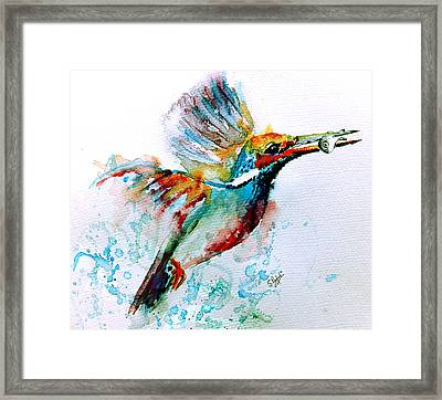 Kingfisher Framed Print by Steven Ponsford