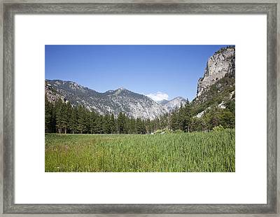 King's Meadow Framed Print by Rick Pham