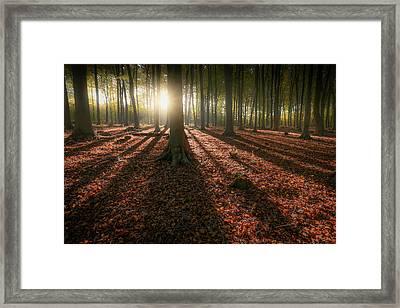 Kingswood Autumn Framed Print by Ian Hufton