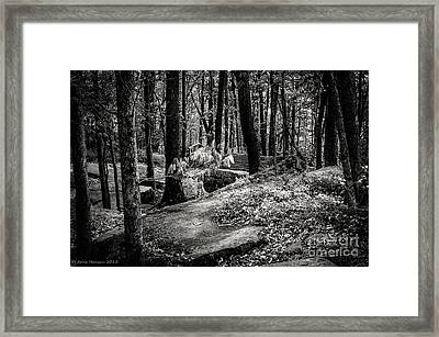 Kinzua Rim Rock Overlook II Framed Print by Arne Hansen