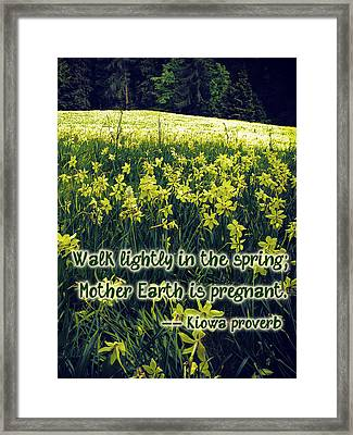 Kiowa Proverb About Spring Framed Print
