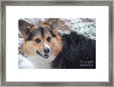 Kipper's Snow Day Framed Print