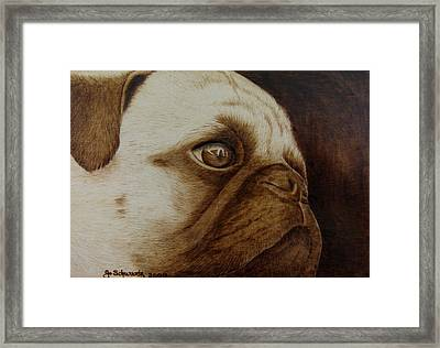 Kiss Me Framed Print by Jo Schwartz