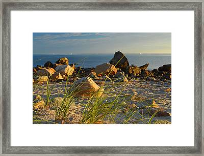 Kiss Of Morning Framed Print by Dianne Cowen
