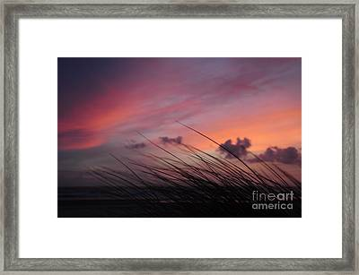Kiss Of Night Framed Print