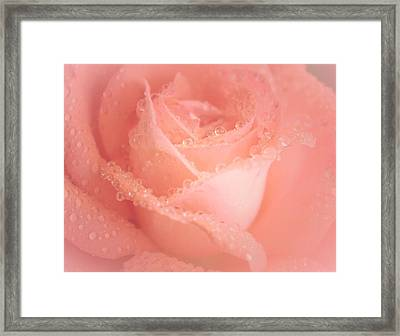 Kissed Sweetly Framed Print