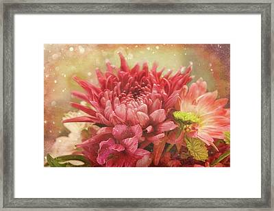 Kissed With Snow Framed Print by Joan Bertucci