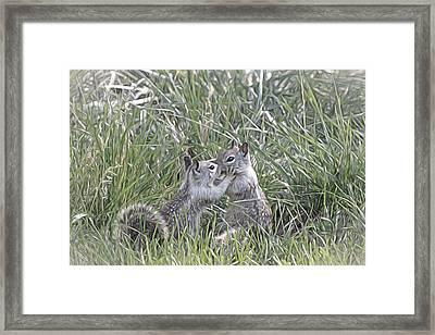 Kisses In The Grass Framed Print
