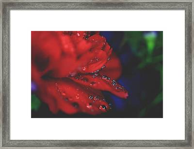 Kisses In The Rain Framed Print by Laurie Search