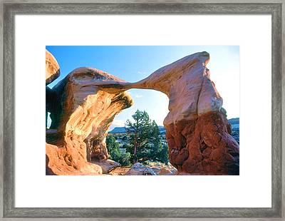Kissing Birds Rock Formation Framed Print