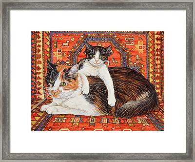 Kit Cat Carpet Framed Print by Ditz