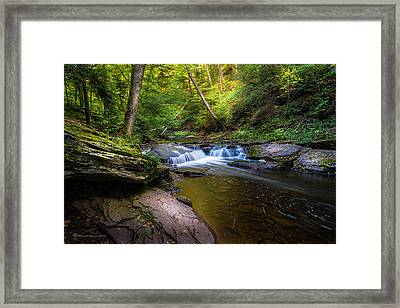Kitchen Creek Framed Print