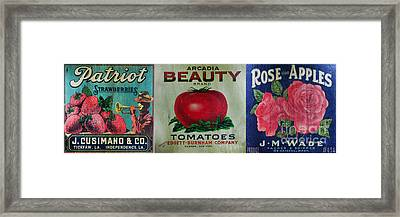Kitchen - Vintage Food Crate Signs  Framed Print by Paul Ward